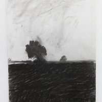 'Trees – Cawood/Stillingfleet' charcoal on paper 42 x 29.5cm1982/4